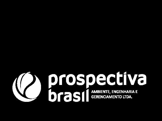 Prospectiva BR, DTF Development services Partner logo