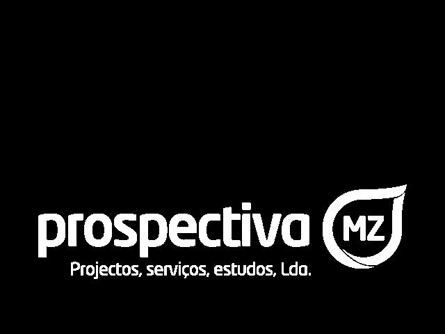 Prospectiva MZ, DTF Development services Partner logo